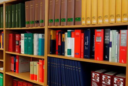 bookcase-335849_960_720